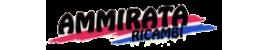Ammirata Ricambi